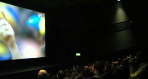 calcio al cinema